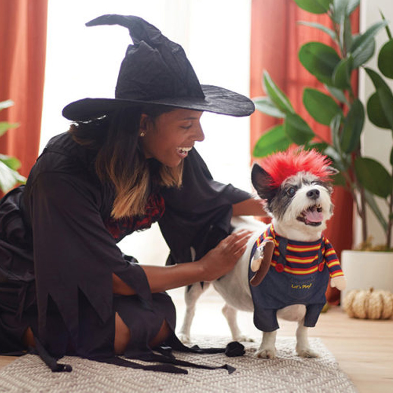 Quiz: What's the Perfect Halloween Costume for Your Pet?