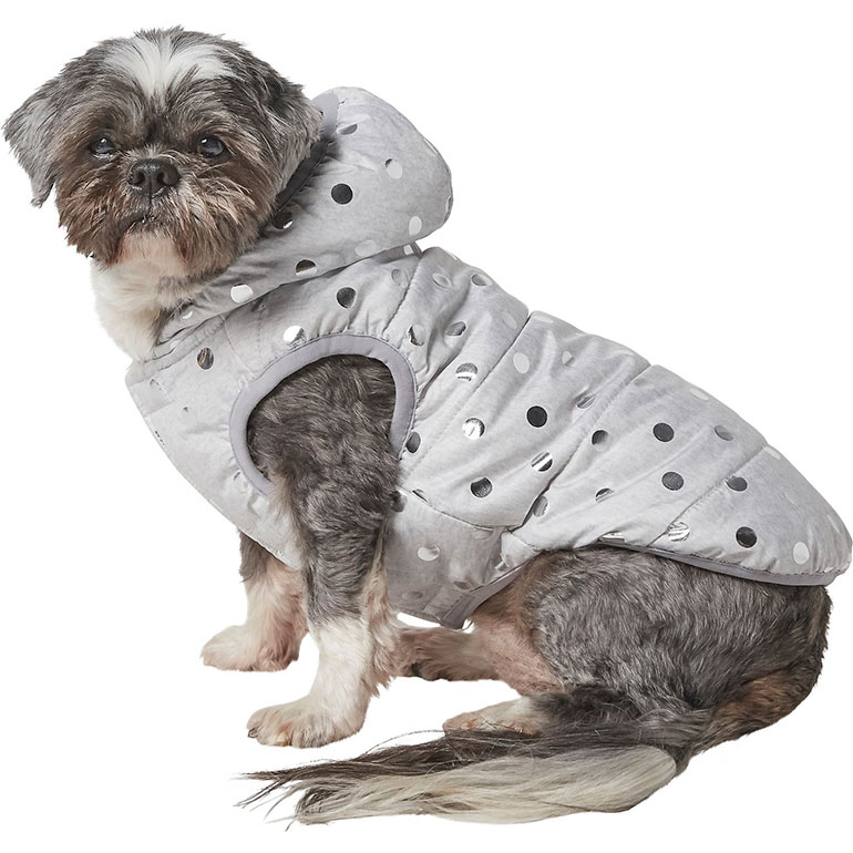 fashion for dogs - silver metallic dog coat