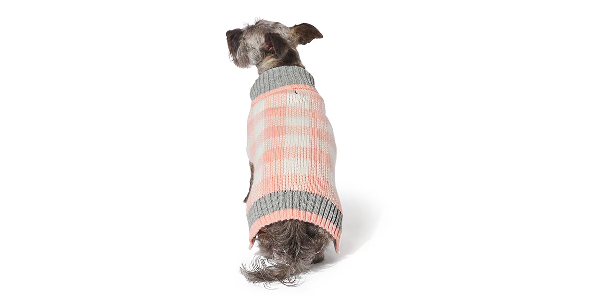 fashion for dogs and cats - plaid sweater