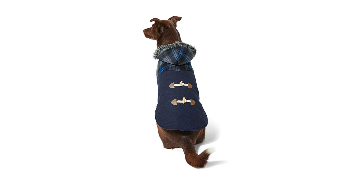 fashion for dogs - toggle jacket