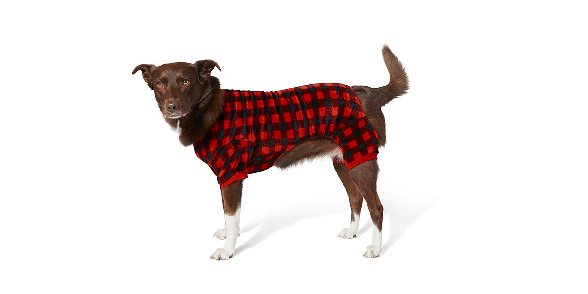fashion for dogs and cats - plaid pajamas