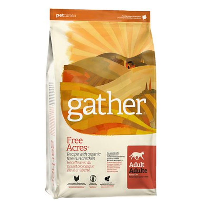 organic cat food - gather