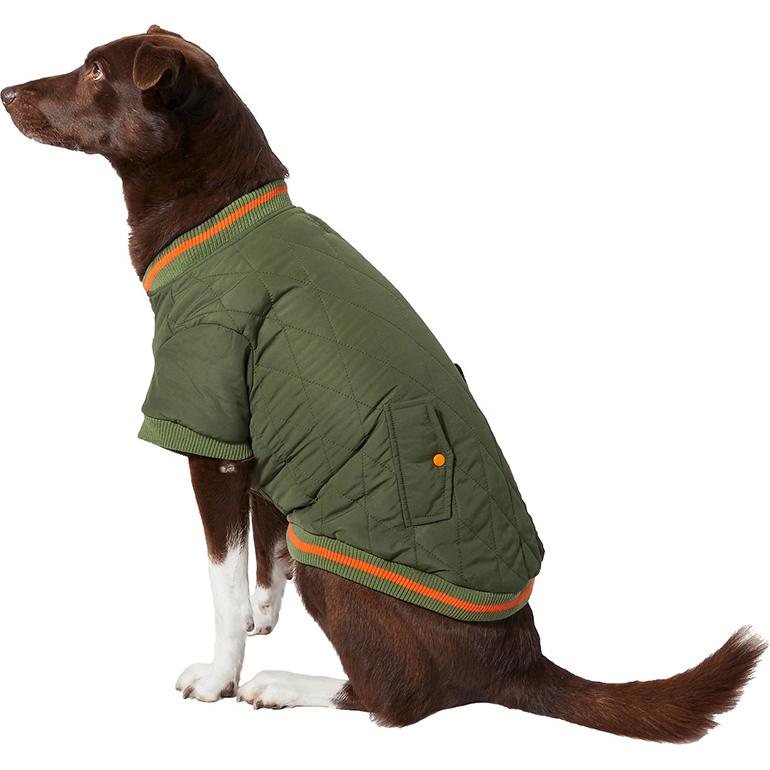 Pet Fashion