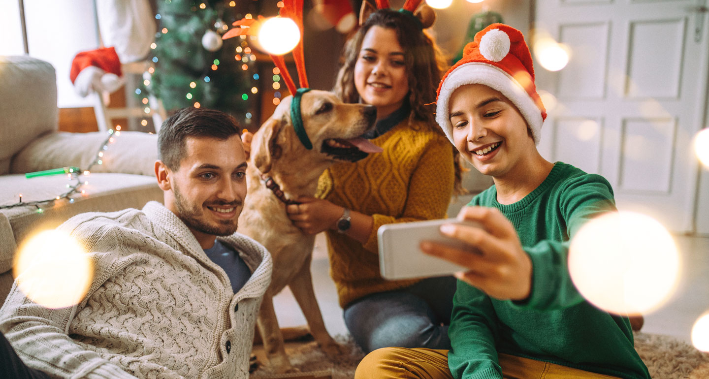 Christmas for pets - fund things to dog with dogs and cats - photos