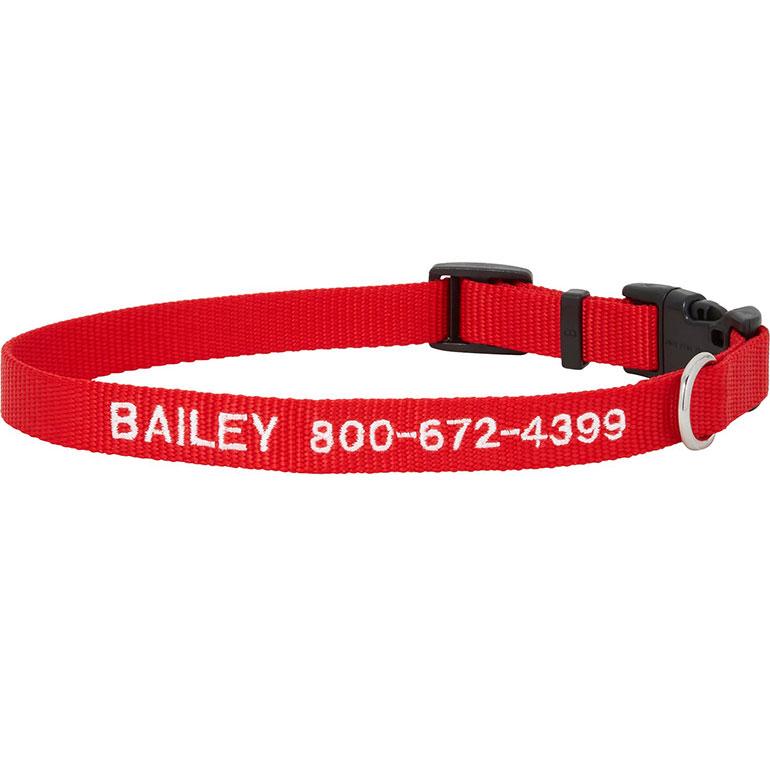 dog Christmas gifts - dog collar