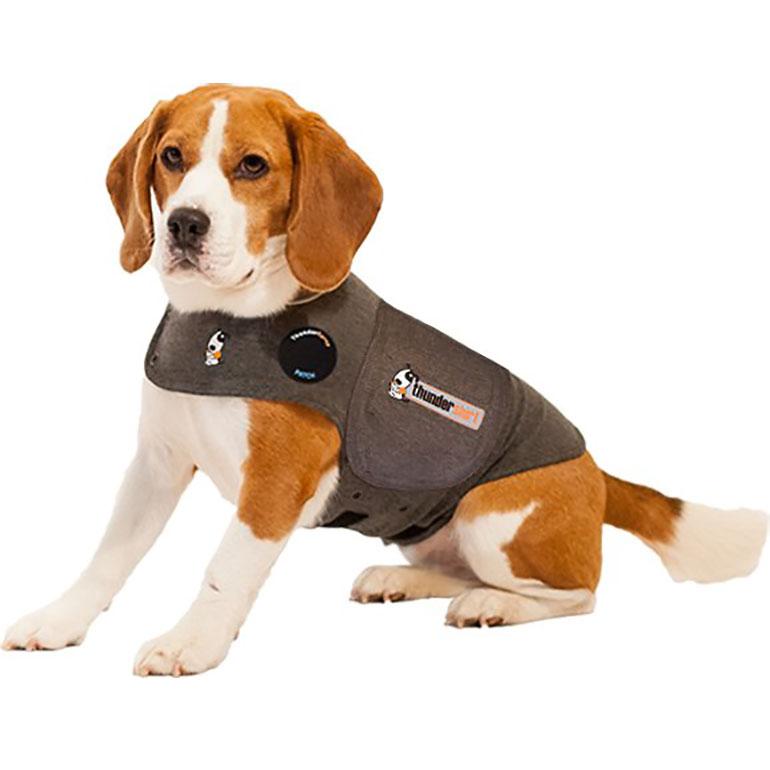 dog christmas gifts - thundershirt calming aid
