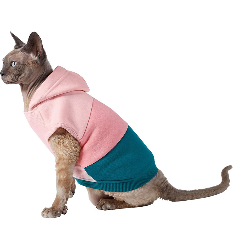 Christmas gifts for cats - sweater