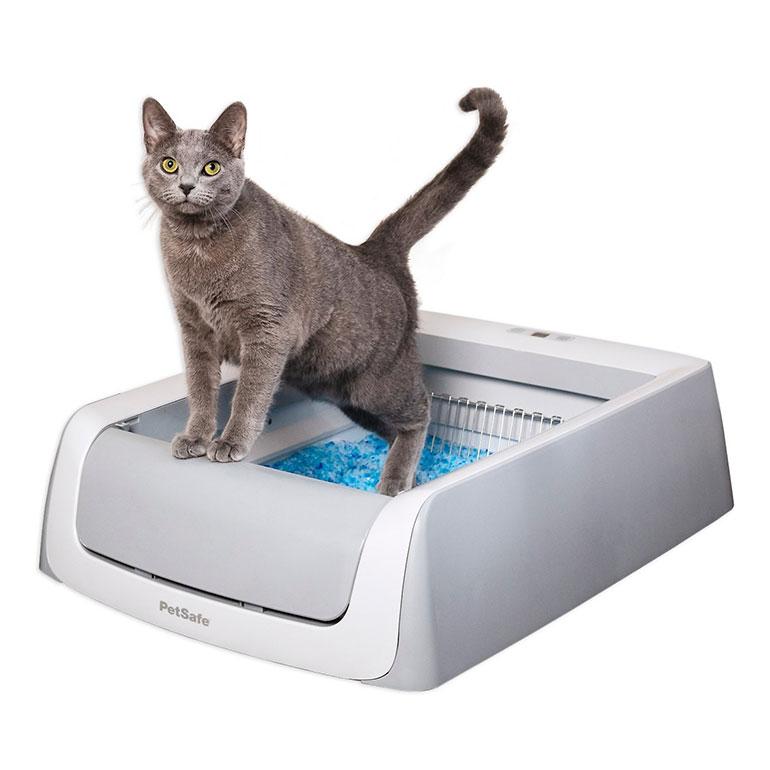 best cat litter box - self-cleaning automated litter box - petsafe