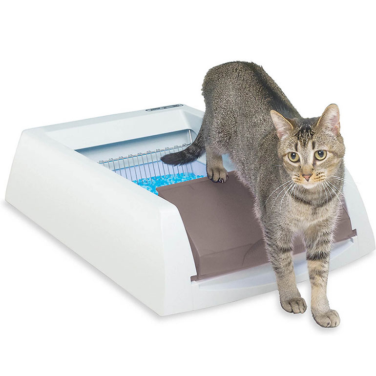 best cat litter box - ScoopFree Original Automatic Cat Litter Box in taupe