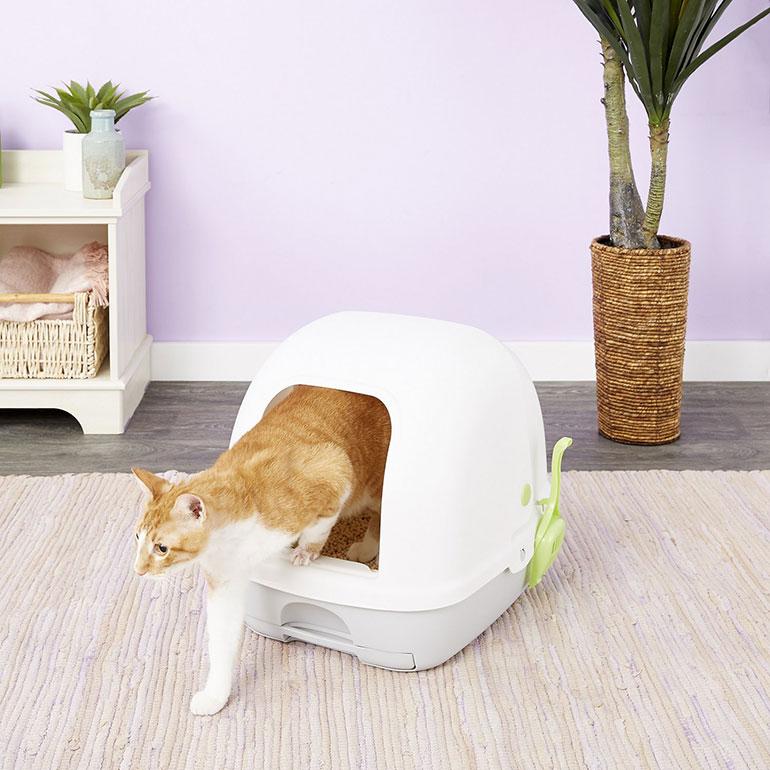 best cat litter box- enclosed litter box