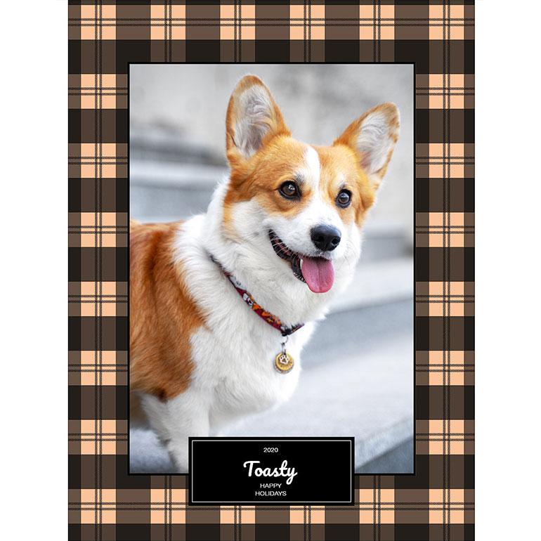 custom pet gifts with pet photos - throw blanket