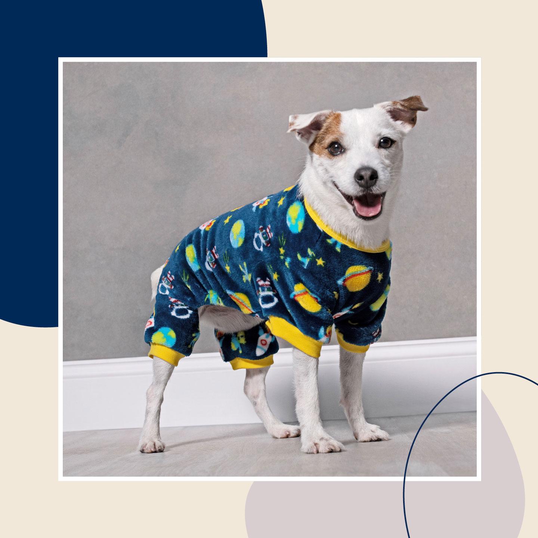 dog winter clothes - pajamas