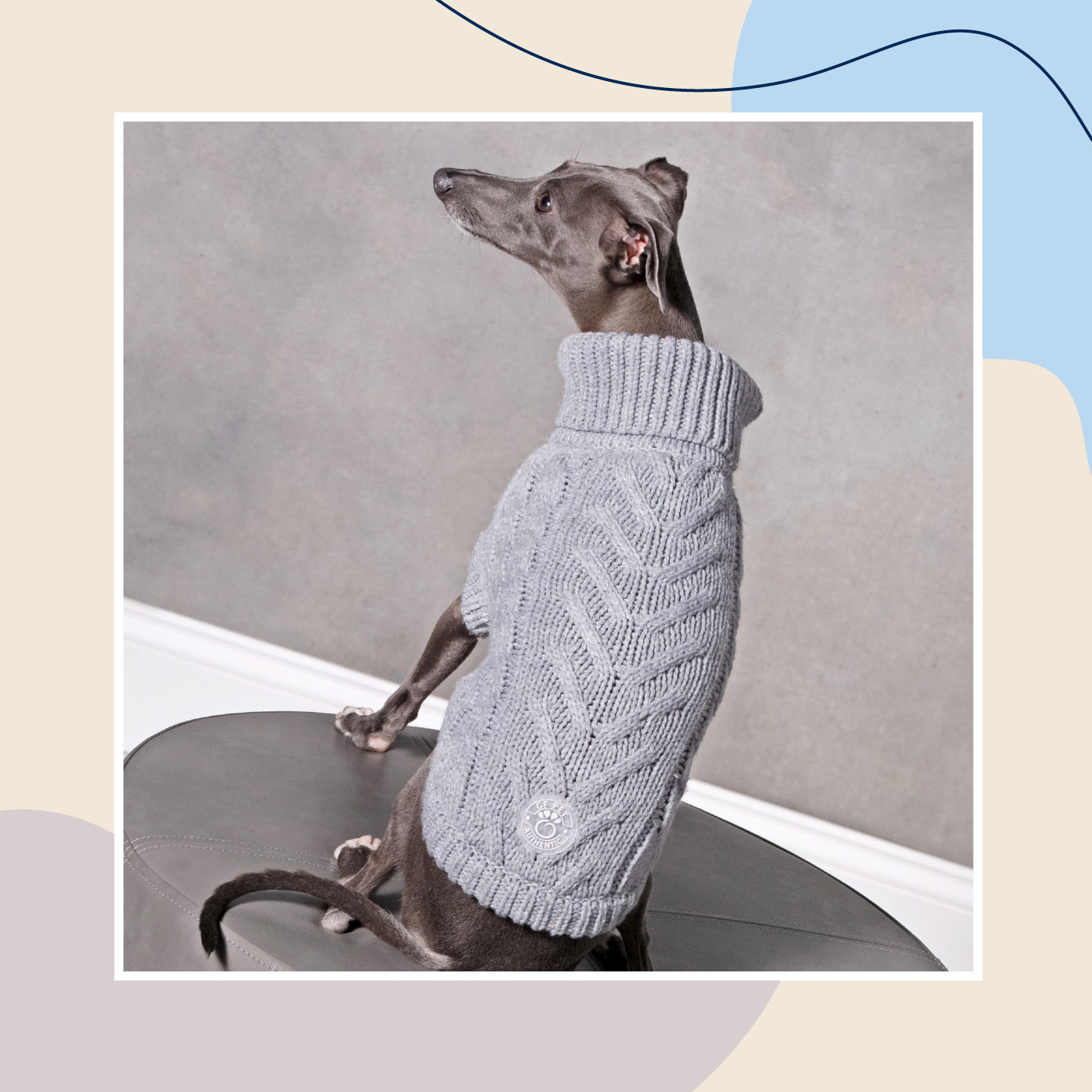 dog winter clothes - sweaters