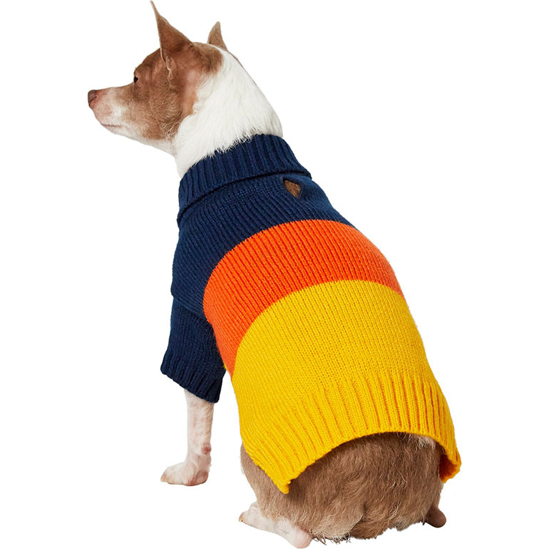 dog sweaters - color blocking