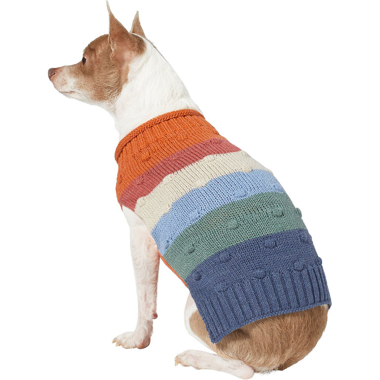 cute dog sweaters - color stripes