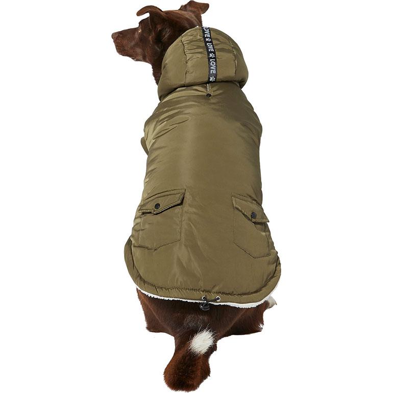 dog winter coast - olive parka