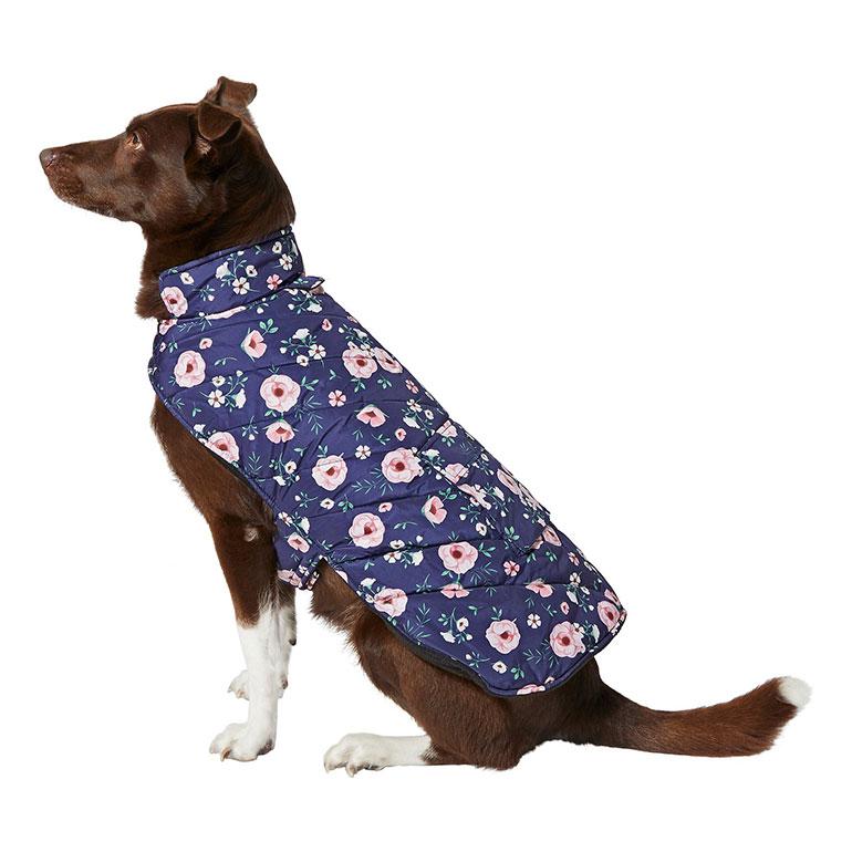 dog winter coats - floral