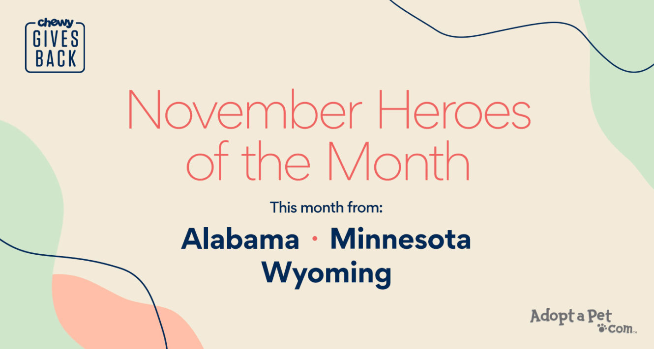 heroes of themonth
