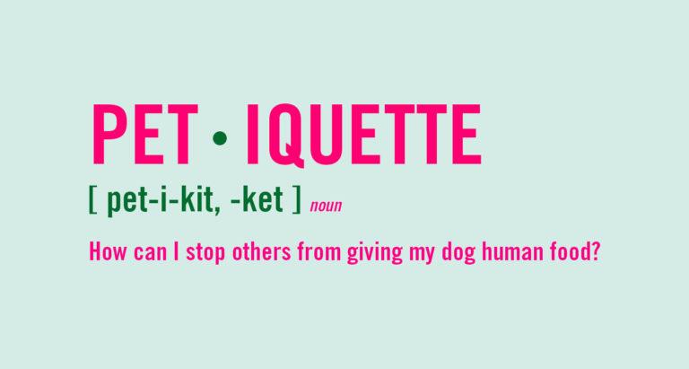 dog etiquette - feeding a dog human food