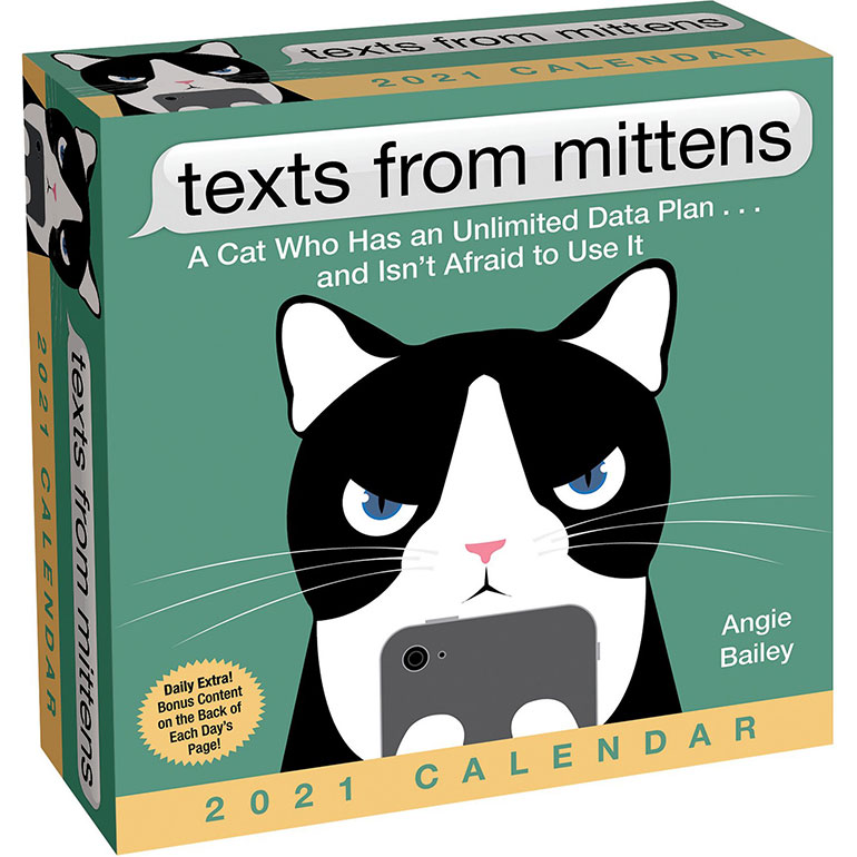 gifts for cat people  - calendar