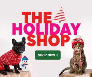 shop Chewy's holiday shop!