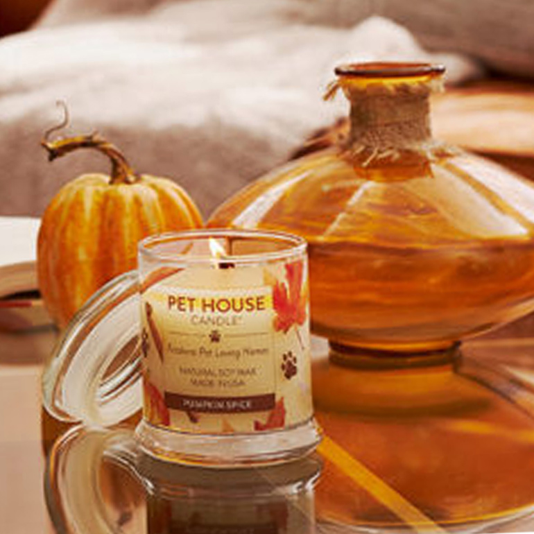 5 Fall Home Fragrances For Pet-Friendly Homes