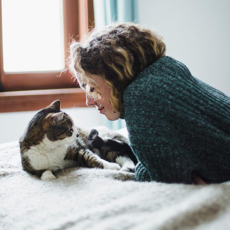 What It's Like To Foster A Pet During The Pandemic