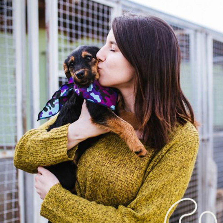 How To Help Shelters For #GivingTuesdayNow