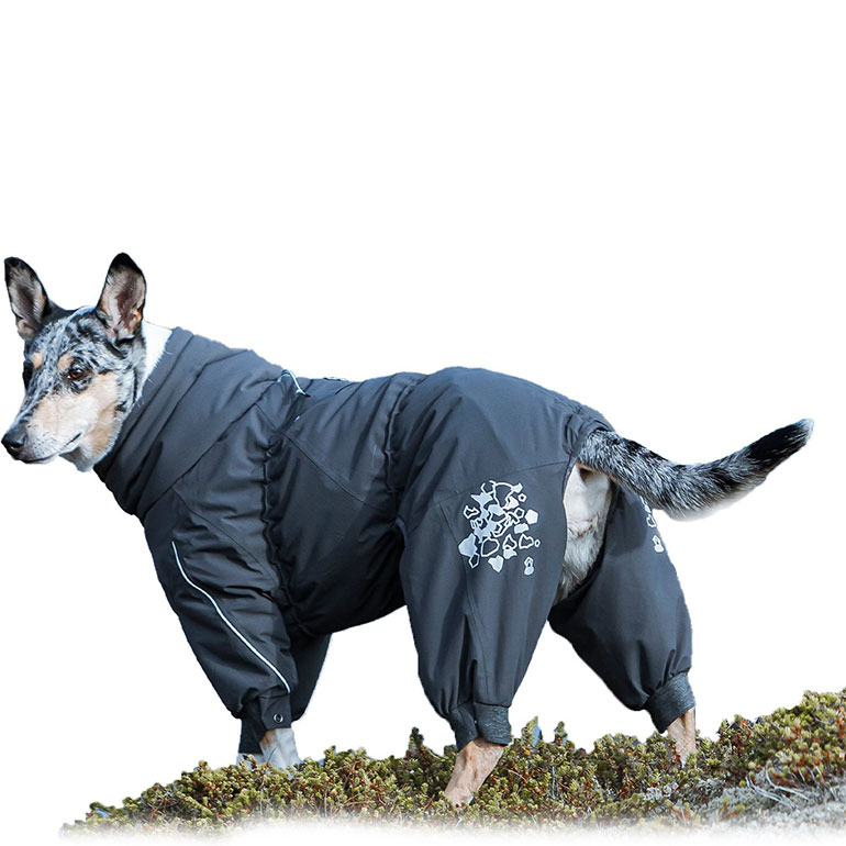 Hurtta Extreme Overall Insulated Dog Snowsuit