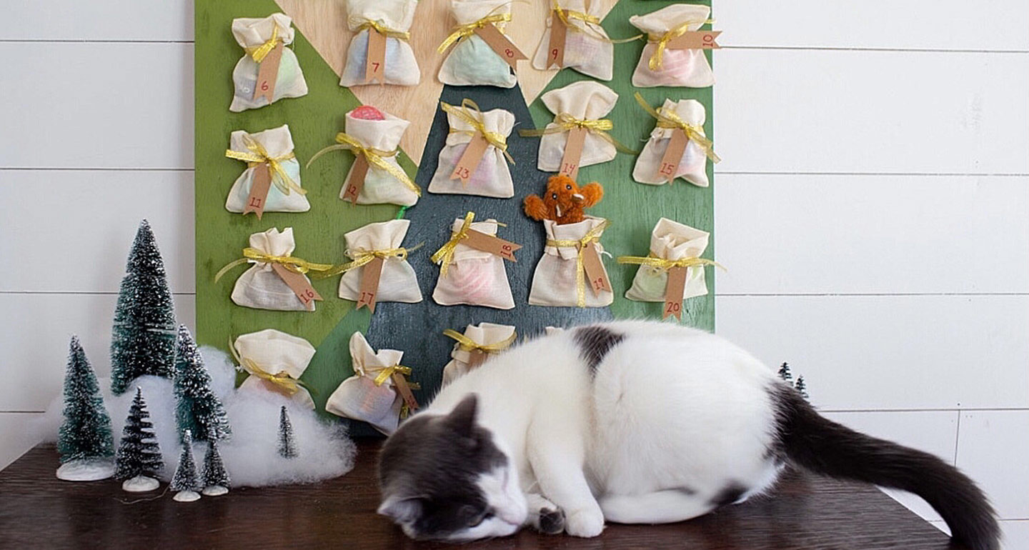 This DIY Cat Advent Calendar Will Make December Your Cat's Favorite Month of the Year