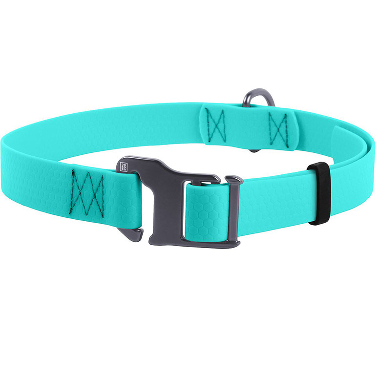 WAUDOG Glows In The Dark Waterproof Buckle Dog Collar