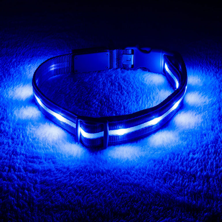 zin' Safety LED USB Rechargeable Nylon Lighted Dog Collar
