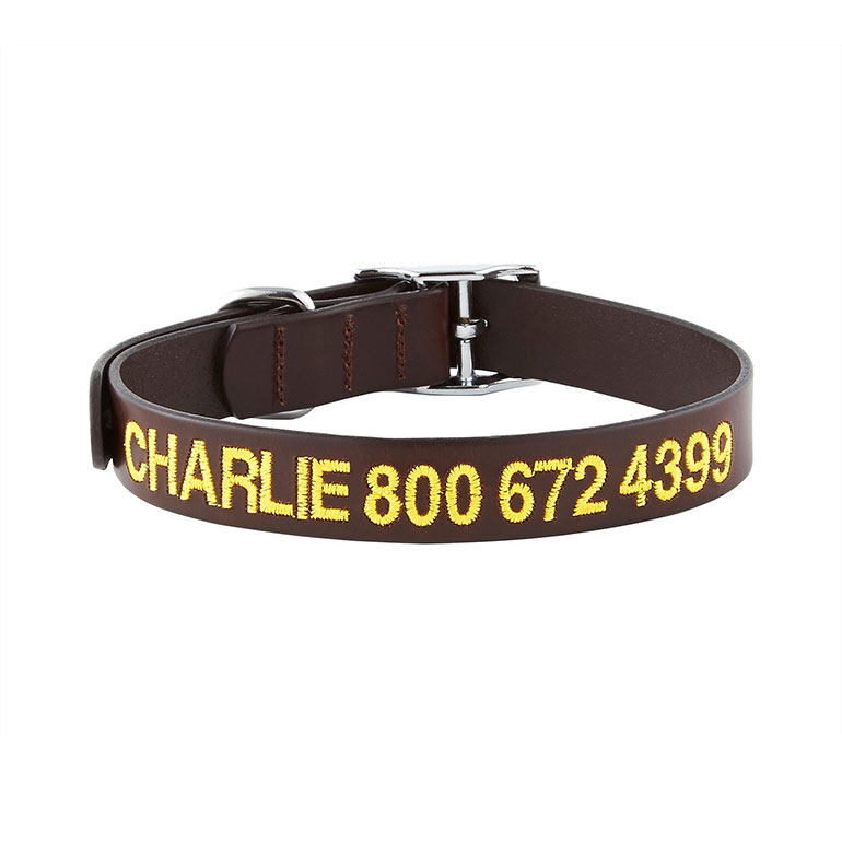GoTags Personalized Leather Dog Collar