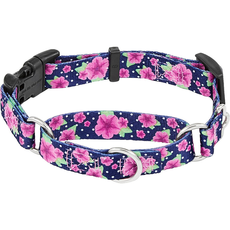 Frisco Patterned Polyester Martingale Dog Collar with Buckle