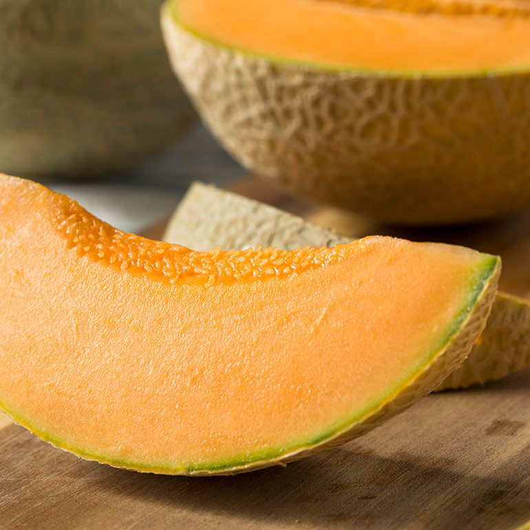 human foods for cats - cantaloupe