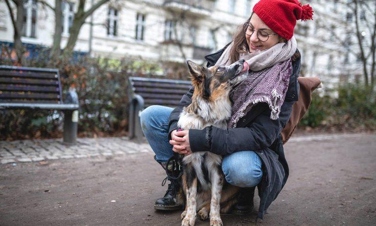 Walking Dog Winter
