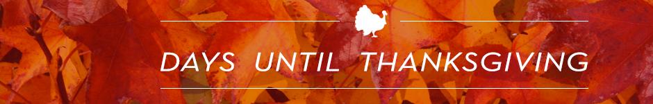 Thanksgiving Countdown Banner