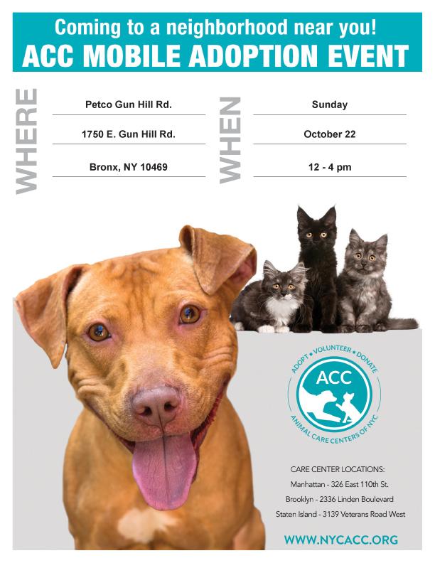 ACC Adoptions at Petco Gun Hill Road - Petfinder Event Calendar
