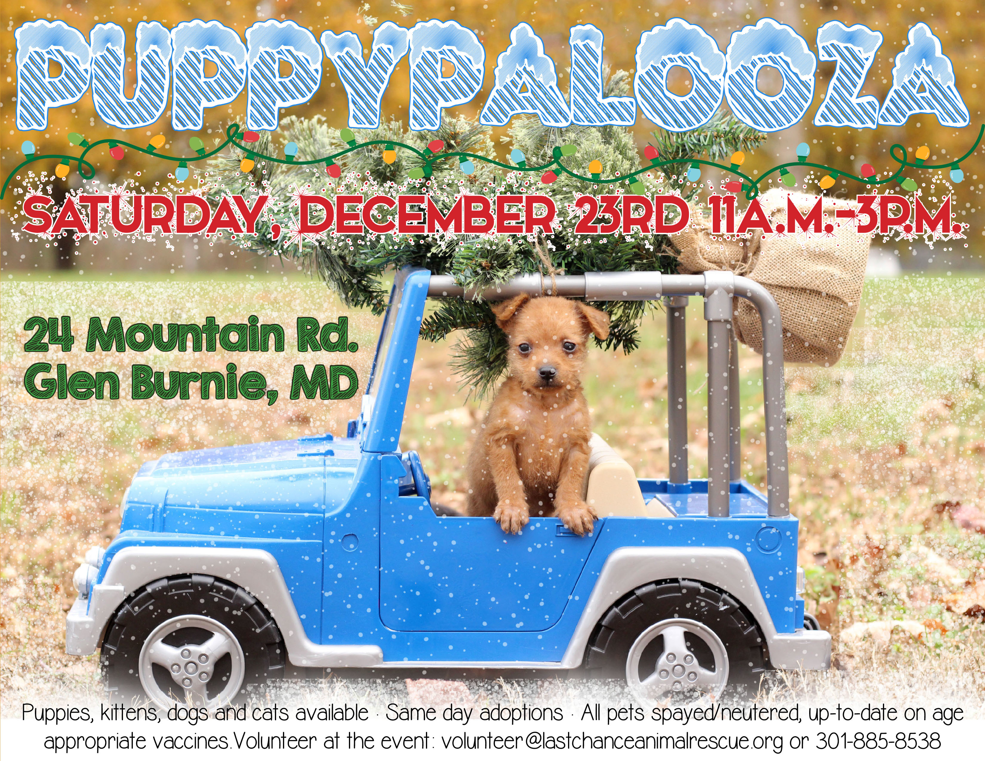 Puppypalooza Adoption Event Glen Burnie Petsmart In Md Petfinder