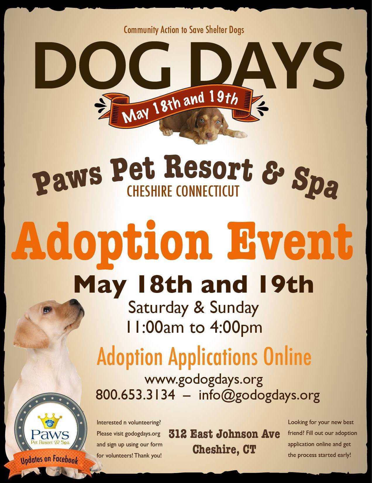 Cheshire Ct Dog Days Adoption Event Petfinder Event Calendar