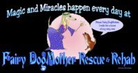 Fairy Dogmother Rescue, Inc.