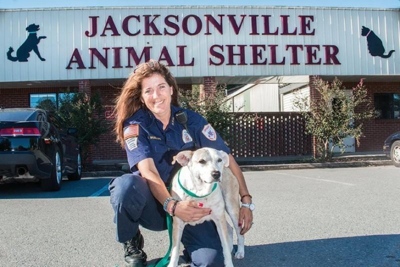 Jacksonville Animal Shelter