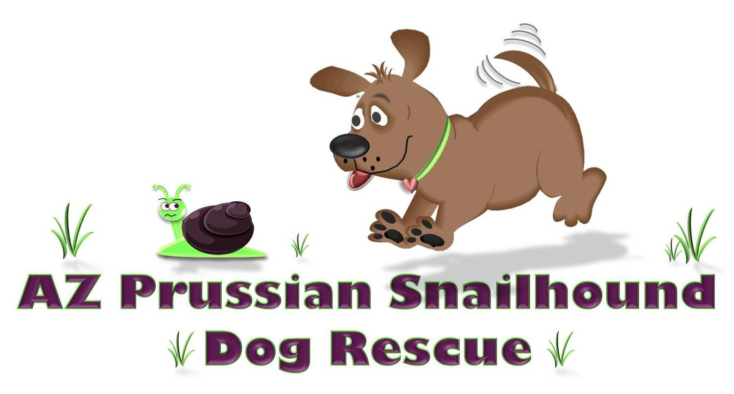 AZ Prussian Snailhound Dog Rescue
