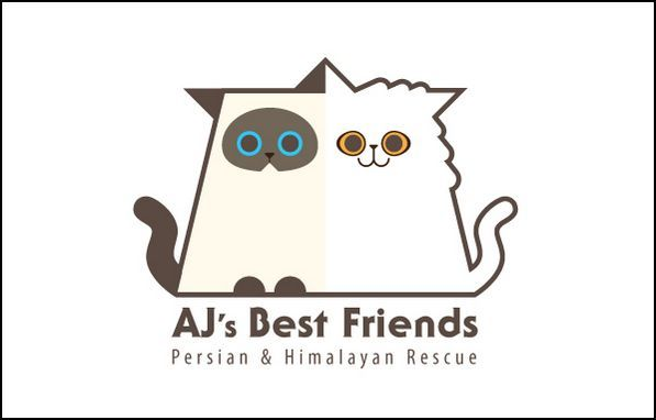 AJs Best Friends Persian & Himalayan Rescue