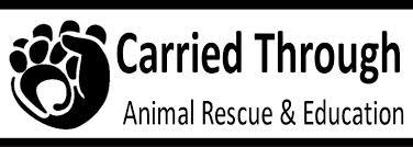 Carried Through Animal Rescue and Education