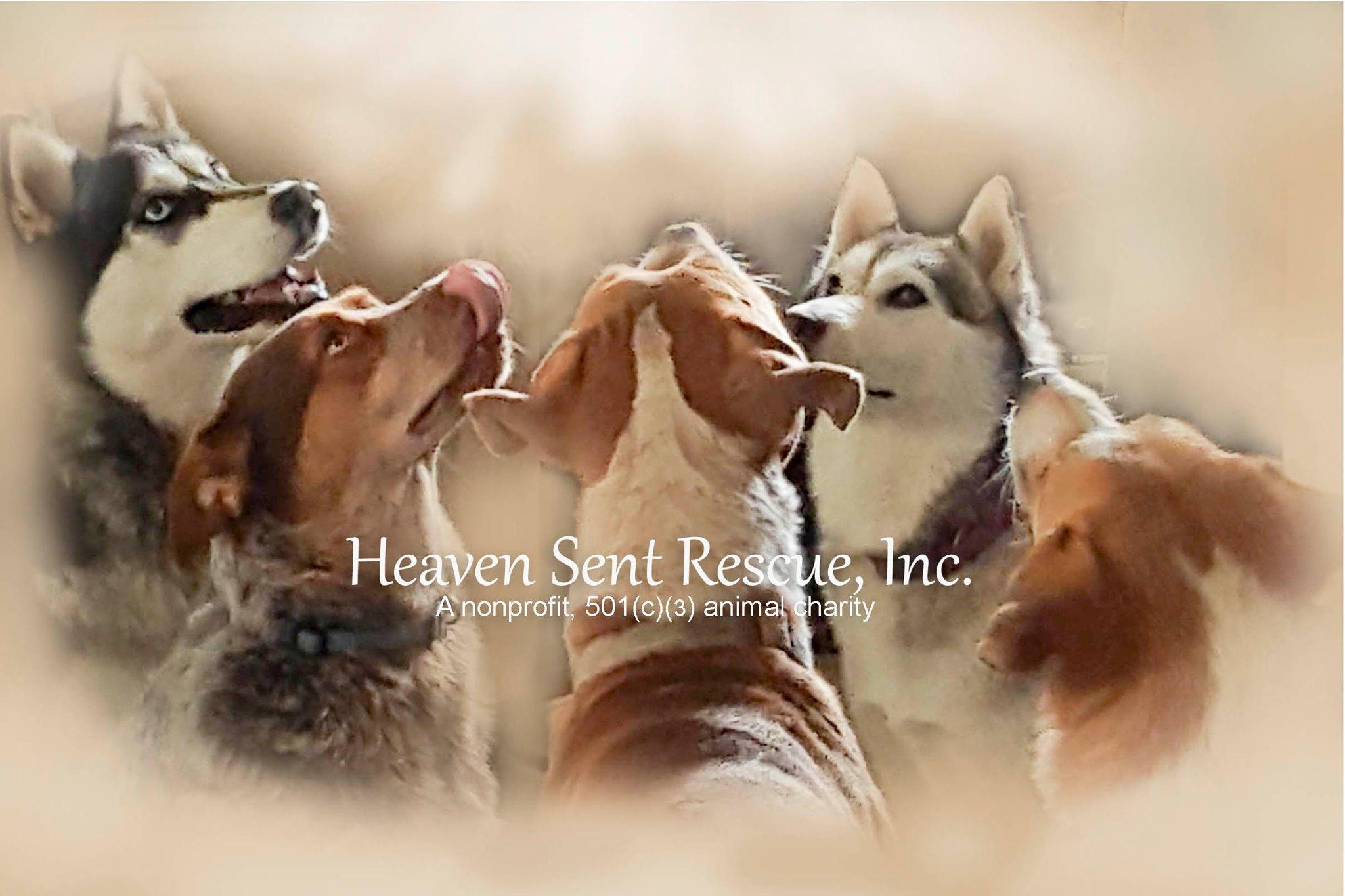 Heaven Sent Rescue, Inc.