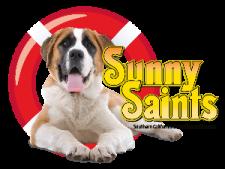 Sunny Saints, Saint Bernard Dog Rescue