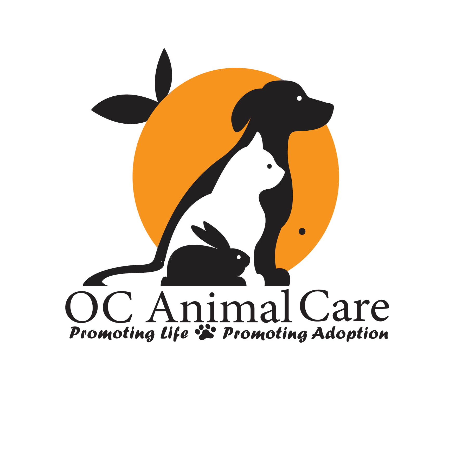 Pets for Adoption at OC Animal Care in Orange CA