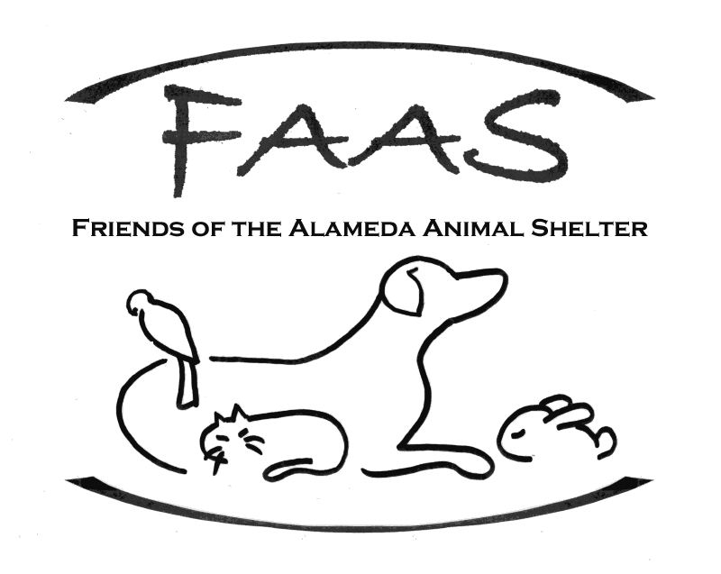 Pets For Adoption At Friends Of The Alameda Animal Shelter In