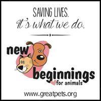 New Beginnings For Animals